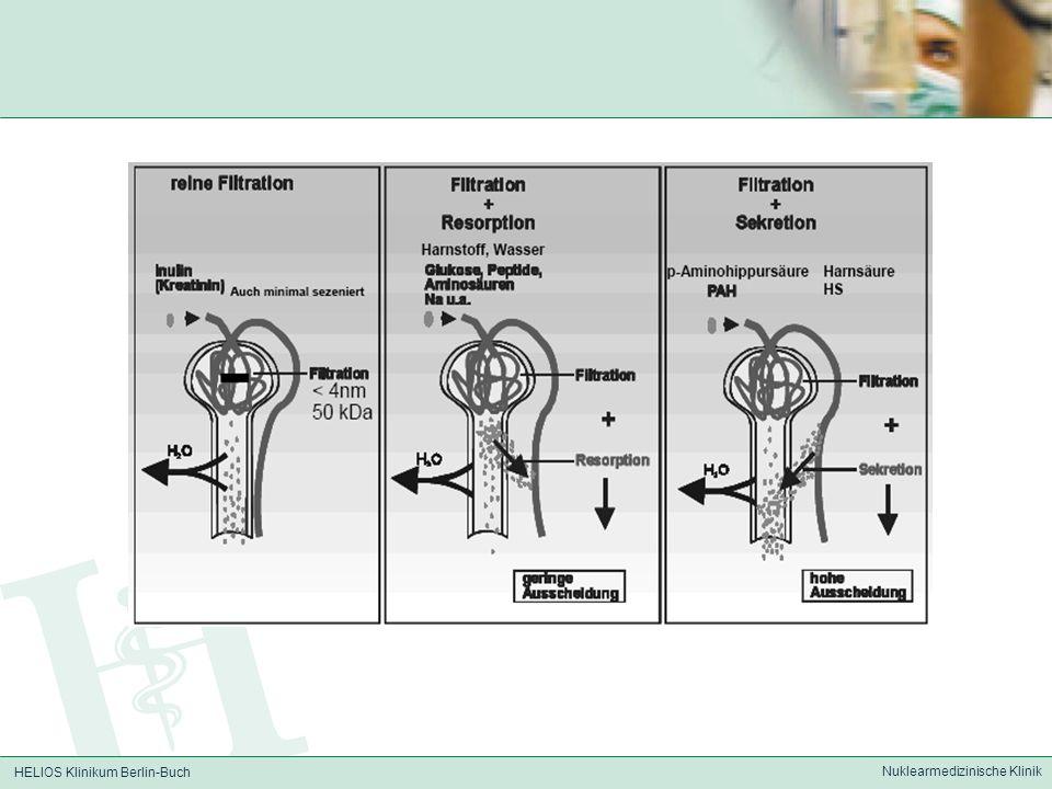 HELIOS Klinikum Berlin-Buch Nuklearmedizinische Klinik Clearance Clearance (Plasmamenge, die in 1 min.
