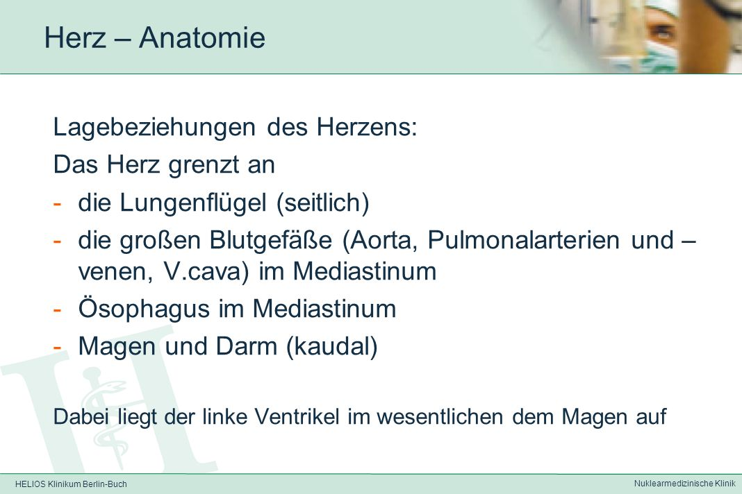 HELIOS Klinikum Berlin-Buch Nuklearmedizinische Klinik Herz – Anatomie Aufbau der Herzwand in drei (vier) Schichten: Endokard (Herzinnenhaut) Myokard (Muskelschicht) Epikard (Herzaußenhaut) Perikard (Herzbeutel) – Umschlagfalte des Epikards, dient als Verschiebeschicht