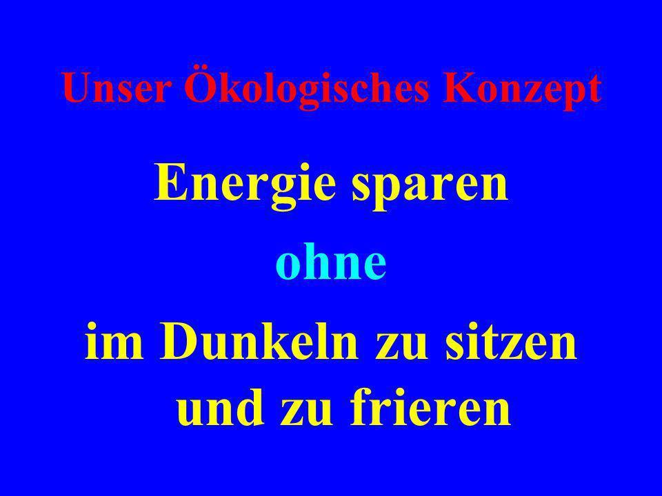Dafür bekamen wir die Solaranlage im Wert von über 50.000 DM von den Stadtwerken Karlsruhe