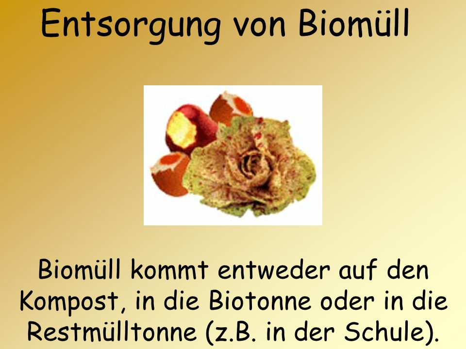 Entsorgung von Biomüll Biomüll kommt entweder auf den Kompost, in die Biotonne oder in die Restmülltonne (z.B. in der Schule).