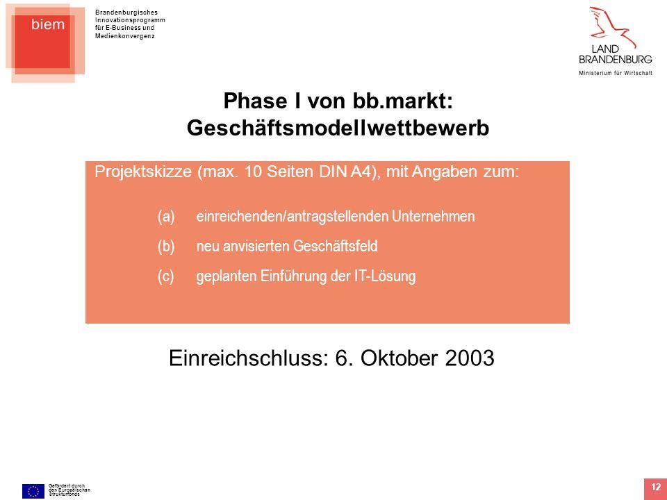 Brandenburgisches Innovationsprogramm für E-Business und Medienkonvergenz Gefördert durch den Europäischen Strukturfonds 12 Projektskizze (max. 10 Sei