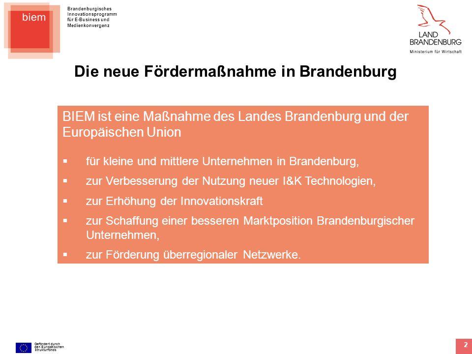Brandenburgisches Innovationsprogramm für E-Business und Medienkonvergenz Gefördert durch den Europäischen Strukturfonds 3 Die Ausgangssituation von BIEM Das Land Brandenburg möchte die Wettbewerbsfaktoren in Kernbereichen der regionalen Wirtschaft fördern und potenzielle Synergien offen legen.