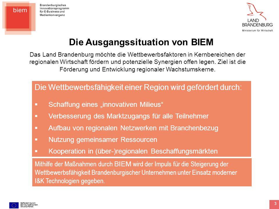 Brandenburgisches Innovationsprogramm für E-Business und Medienkonvergenz Gefördert durch den Europäischen Strukturfonds 4 Die Struktur der Maßnahmen von BIEM Mit drei Aktionsfeldern und mehreren Querschnittsthemen werden spezielle, auf die Situation der Unternehmen in Brandenburg zugeschnittene, Themen fokussiert.
