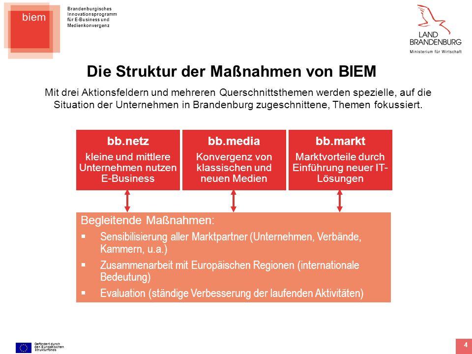 Brandenburgisches Innovationsprogramm für E-Business und Medienkonvergenz Gefördert durch den Europäischen Strukturfonds 5 Aktionsfeld bb.markt bb.markt – kleine und mittlere Unternehmen nutzen IT-Lösungen für neue Geschäftsmodelle 1.Sensibilisierung von kleinen und mittleren Unternehmen (KMU) für das wirtschaftliche Potenzial der Implementierung von IT-Systemen zur Realisierung neuer Geschäftsmodelle 2.Unterstützung von IT-basierten Geschäftsmodellen mit dem Ideenwettbewerb 3.