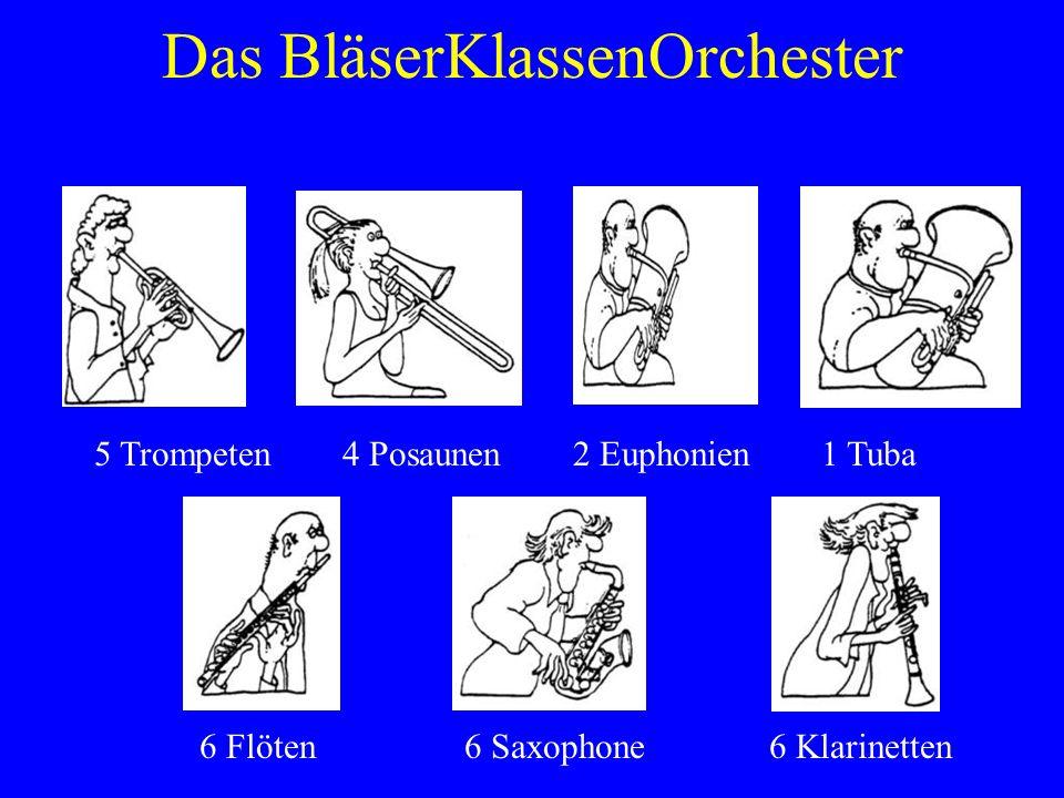 Das BläserKlassenOrchester 5 Trompeten 6 Flöten 1 Tuba4 Posaunen 6 Klarinetten 2 Euphonien 6 Saxophone