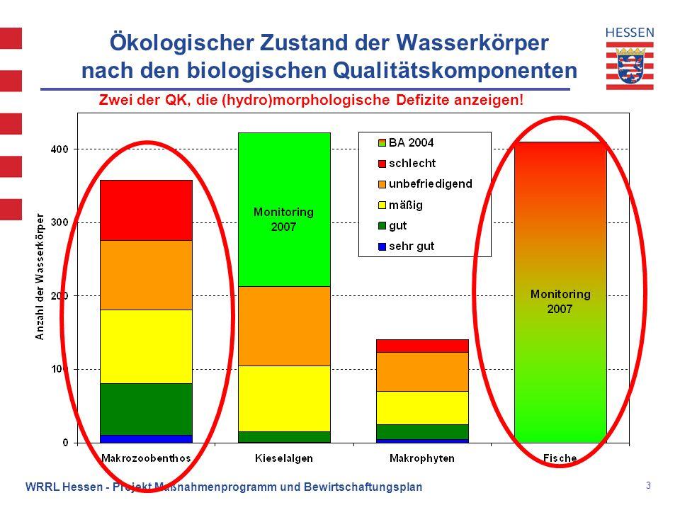 3 WRRL Hessen - Projekt Maßnahmenprogramm und Bewirtschaftungsplan Ökologischer Zustand der Wasserkörper nach den biologischen Qualitätskomponenten Zw