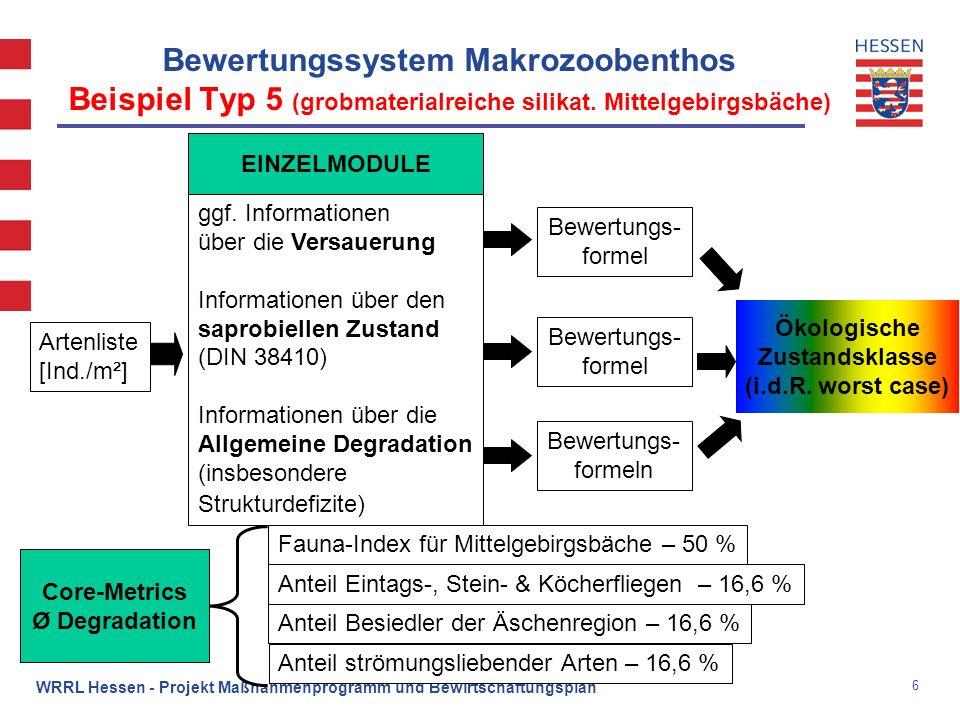 7 WRRL Hessen - Projekt Maßnahmenprogramm und Bewirtschaftungsplan Ergebnisse Zwischenmonitoring 2004-2006 Makrozoobenthos (Modul Saprobie; Modul Degradation bei Typ 5) Beisp.: Verteilung der einzelnen Bewertungsergebnisse der Untersuchungen in silikatischen, grobmaterialreichen Mittelgebirgsbachen (Typ 5; n = 408)