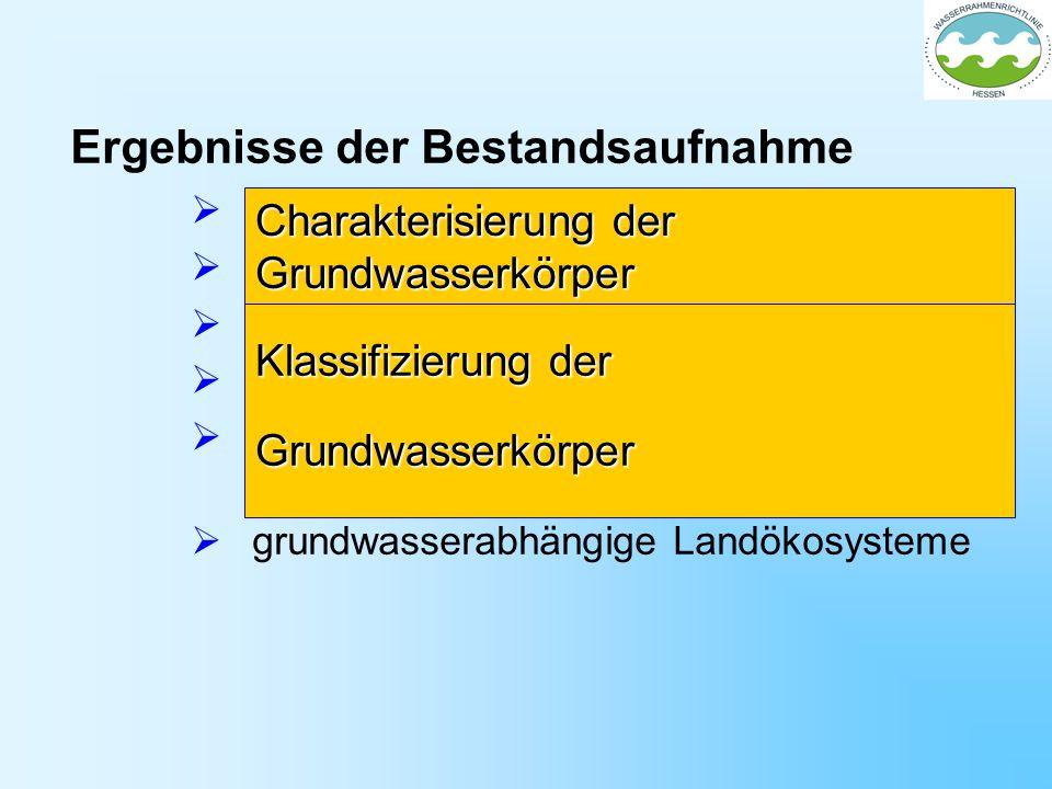 Ergebnisse der Bestandsaufnahme Lage und Grenzen der Grundwasserkörper Beschreibung der Grundwasserkörper Grundwasserqualität Grundwassermenge Analyse