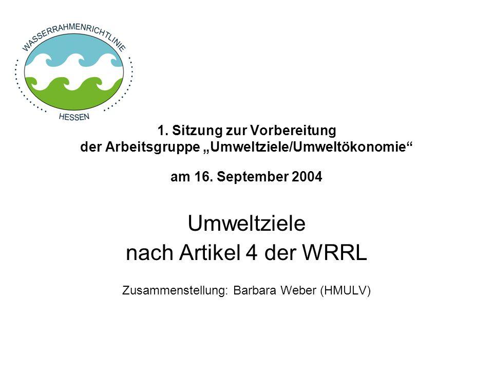 1.Sitzung zur Vorbereitung der Arbeitsgruppe Umweltziele/Umweltökonomie am 16.