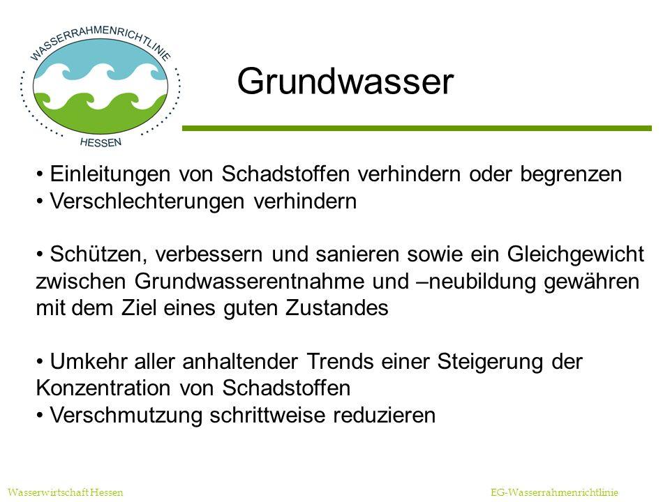 Wasserwirtschaft Hessen EG-Wasserrahmenrichtlinie Schutzgebiete Erfüllung aller Normen und Ziele bis 2015, sofern die gemeinschaftlichen Rechtsvorschriften keine anderweitigen Bestimmungen enthalten