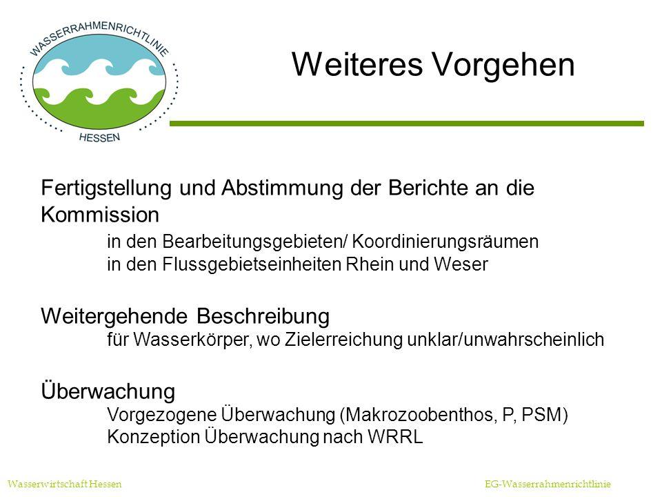 Weiteres Vorgehen Wasserwirtschaft Hessen EG-Wasserrahmenrichtlinie Fertigstellung und Abstimmung der Berichte an die Kommission in den Bearbeitungsgebieten/ Koordinierungsräumen in den Flussgebietseinheiten Rhein und Weser Weitergehende Beschreibung für Wasserkörper, wo Zielerreichung unklar/unwahrscheinlich Überwachung Vorgezogene Überwachung (Makrozoobenthos, P, PSM) Konzeption Überwachung nach WRRL