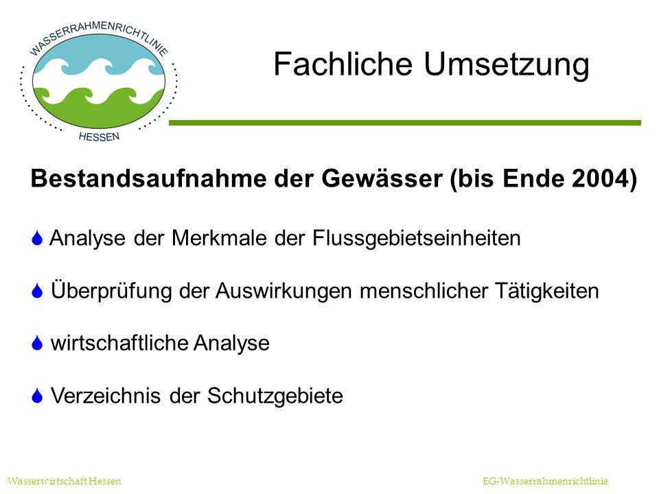 Fachliche Umsetzung Wasserwirtschaft Hessen EG-Wasserrahmenrichtlinie Bestandsaufnahme der Gewässer (bis Ende 2004) Analyse der Merkmale der Flussgebietseinheiten Überprüfung der Auswirkungen menschlicher Tätigkeiten wirtschaftliche Analyse Verzeichnis der Schutzgebiete