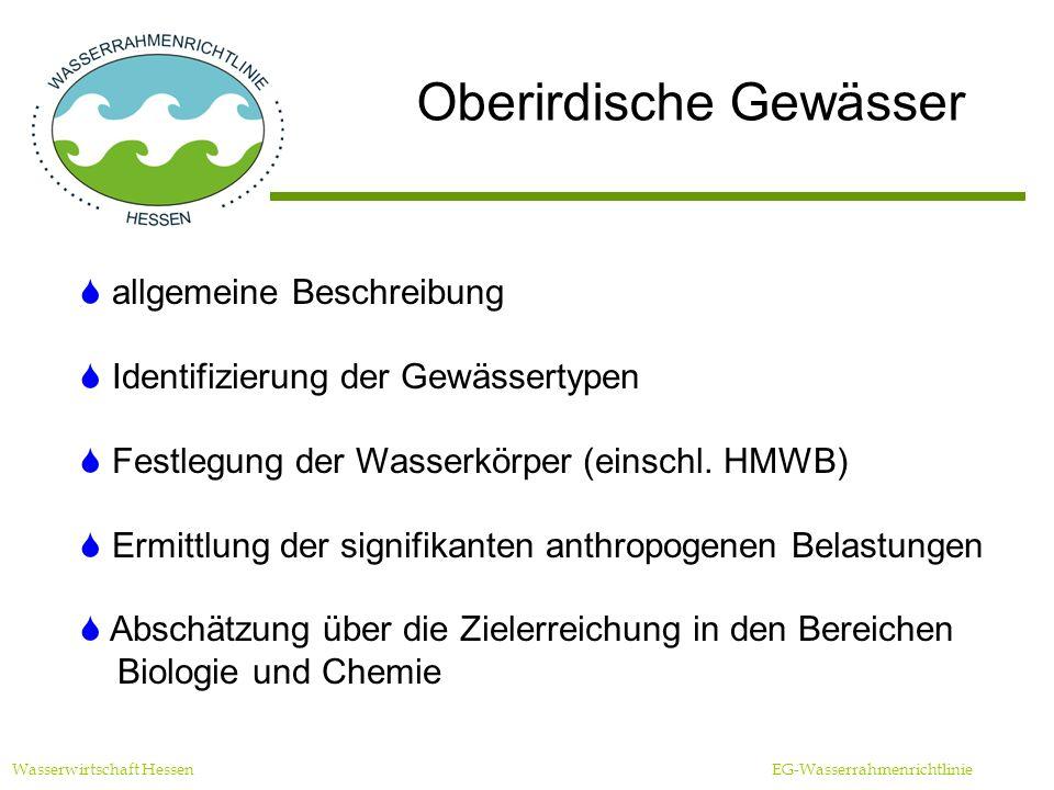 Oberirdische Gewässer Wasserwirtschaft Hessen EG-Wasserrahmenrichtlinie allgemeine Beschreibung Identifizierung der Gewässertypen Festlegung der Wasserkörper (einschl.