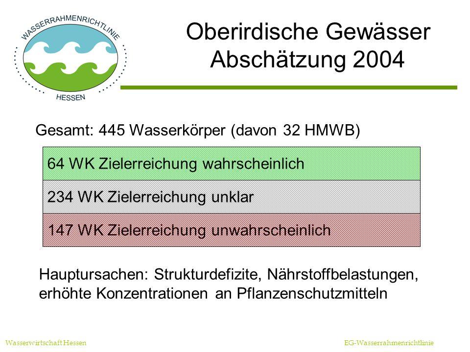 Oberirdische Gewässer Abschätzung 2004 Wasserwirtschaft Hessen EG-Wasserrahmenrichtlinie Gesamt: 445 Wasserkörper (davon 32 HMWB) 64 WK Zielerreichung wahrscheinlich 234 WK Zielerreichung unklar 147 WK Zielerreichung unwahrscheinlich Hauptursachen: Strukturdefizite, Nährstoffbelastungen, erhöhte Konzentrationen an Pflanzenschutzmitteln
