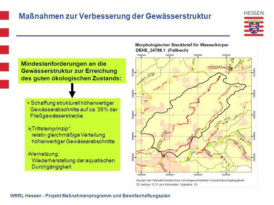 WRRL Hessen - Projekt Maßnahmenprogramm und Bewirtschaftungsplan Maßnahmen zur Verbesserung der Gewässerstruktur Schaffung strukturell höherwertiger G