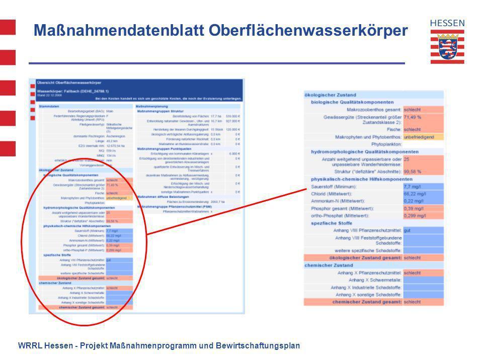 Maßnahmendatenblatt Oberflächenwasserkörper WRRL Hessen - Projekt Maßnahmenprogramm und Bewirtschaftungsplan