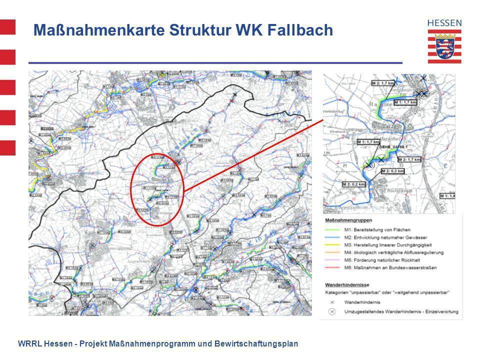 Maßnahmenkarte Struktur WK Fallbach WRRL Hessen - Projekt Maßnahmenprogramm und Bewirtschaftungsplan