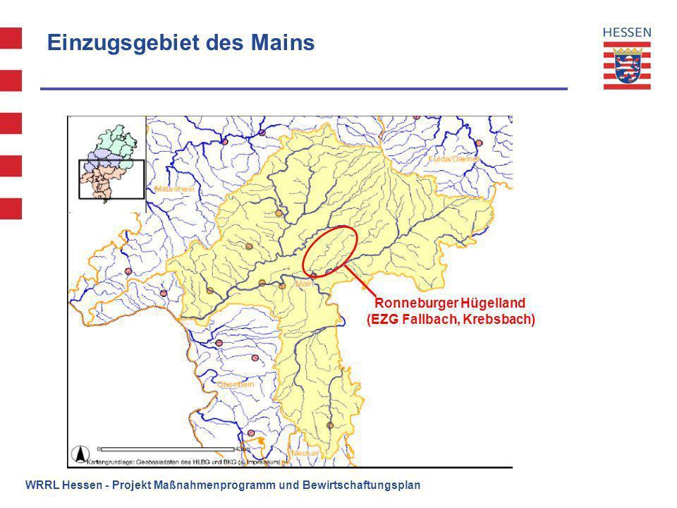 WRRL Hessen - Projekt Maßnahmenprogramm und Bewirtschaftungsplan Einzugsgebiet des Mains Ronneburger Hügelland (EZG Fallbach, Krebsbach)