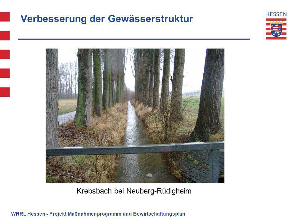 Verbesserung der Gewässerstruktur Krebsbach bei Neuberg-Rüdigheim WRRL Hessen - Projekt Maßnahmenprogramm und Bewirtschaftungsplan