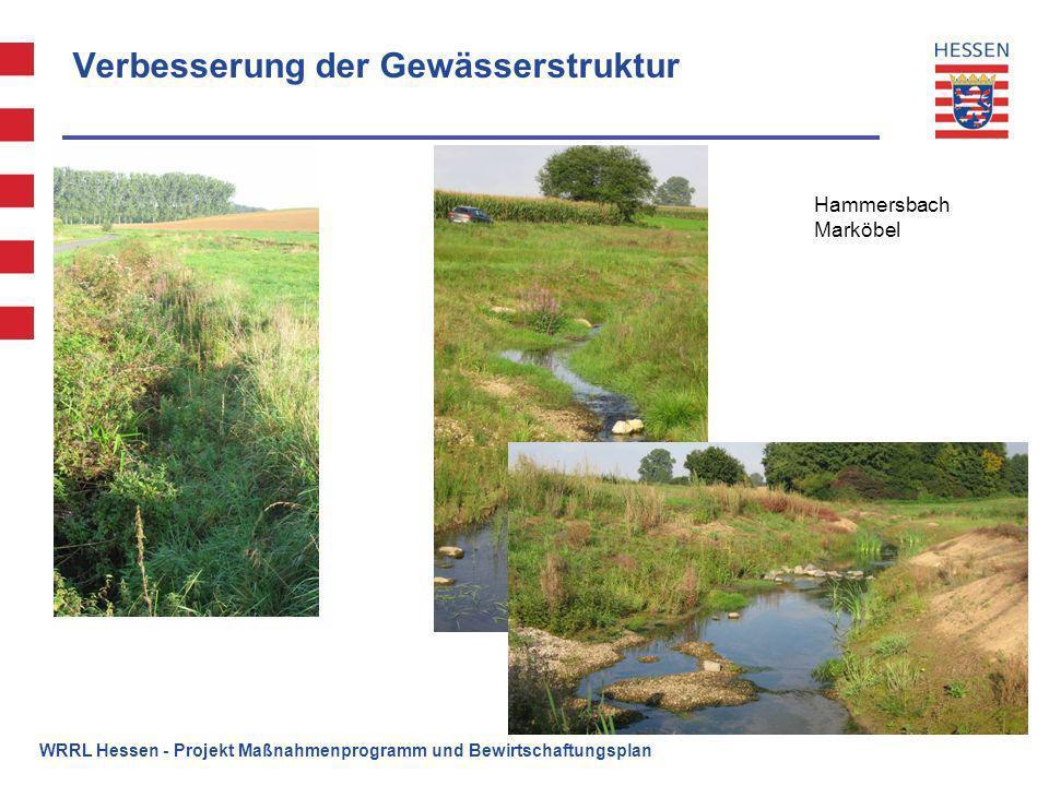Verbesserung der Gewässerstruktur Hammersbach Marköbel WRRL Hessen - Projekt Maßnahmenprogramm und Bewirtschaftungsplan