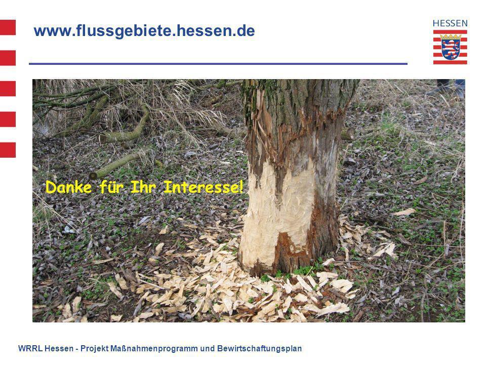 www.flussgebiete.hessen.de Vielen Dank für Ihre Aufmerksamkeit ! WRRL Hessen - Projekt Maßnahmenprogramm und Bewirtschaftungsplan Danke für Ihr Intere