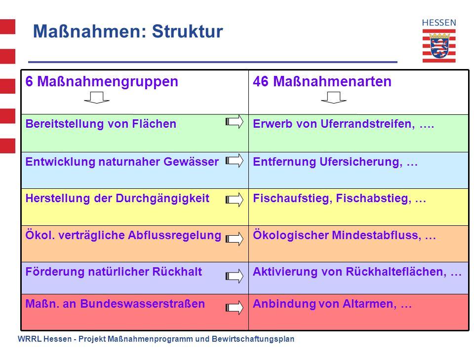 WRRL Hessen - Projekt Maßnahmenprogramm und Bewirtschaftungsplan Maßnahmen: Struktur Anbindung von Altarmen, …Maßn. an Bundeswasserstraßen Aktivierung