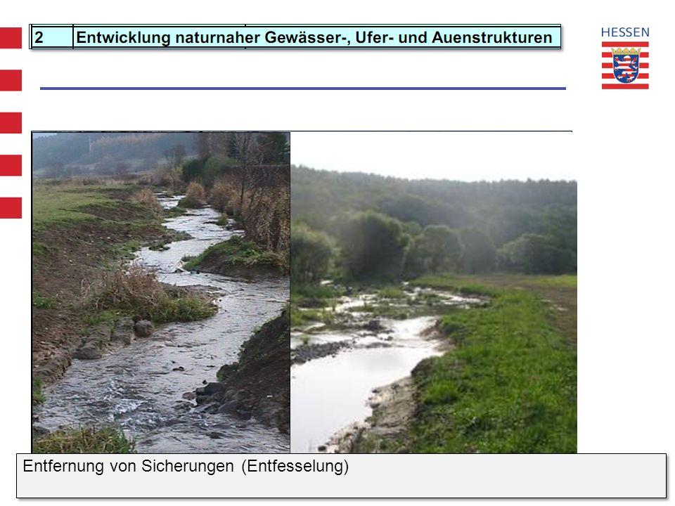 WRRL Hessen - Projekt Maßnahmenprogramm und Bewirtschaftungsplan Entfernung von Sicherungen (Entfesselung)