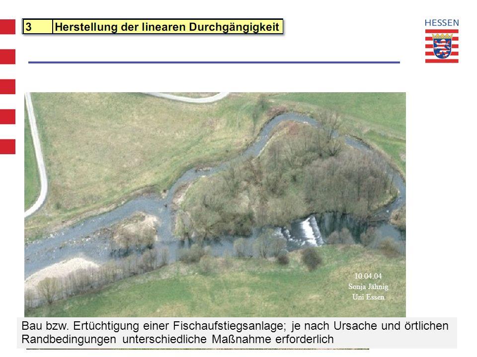 WRRL Hessen - Projekt Maßnahmenprogramm und Bewirtschaftungsplan 10.04.04 Sonja Jähnig Uni Essen Bau bzw. Ertüchtigung einer Fischaufstiegsanlage; je