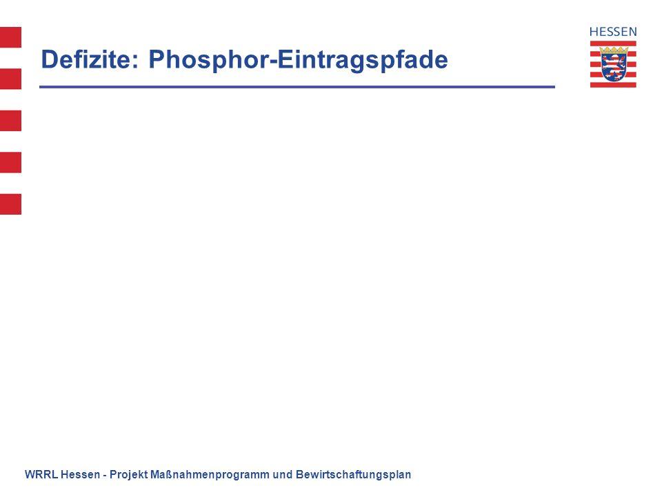 WRRL Hessen - Projekt Maßnahmenprogramm und Bewirtschaftungsplan Umfang erforderlichen Verbesserungsmaßnahmen - Teilbereich Hydromorphologie im hess.