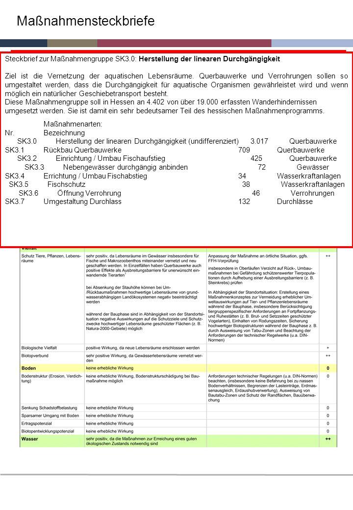 Maßnahmensteckbriefe Steckbrief zur Maßnahmengruppe SK3.0: Herstellung der linearen Durchgängigkeit Ziel ist die Vernetzung der aquatischen Lebensräum