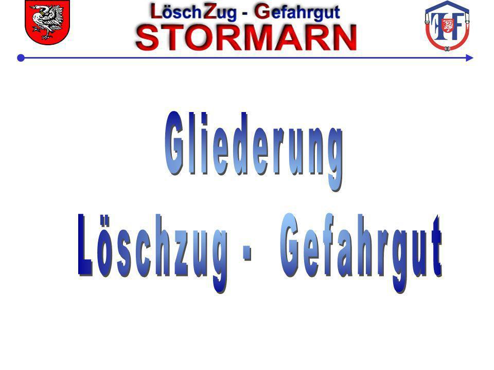 Führungsschema LZ-G Stormarn Einsatzleitung Zugführer LZ-G Stellv.