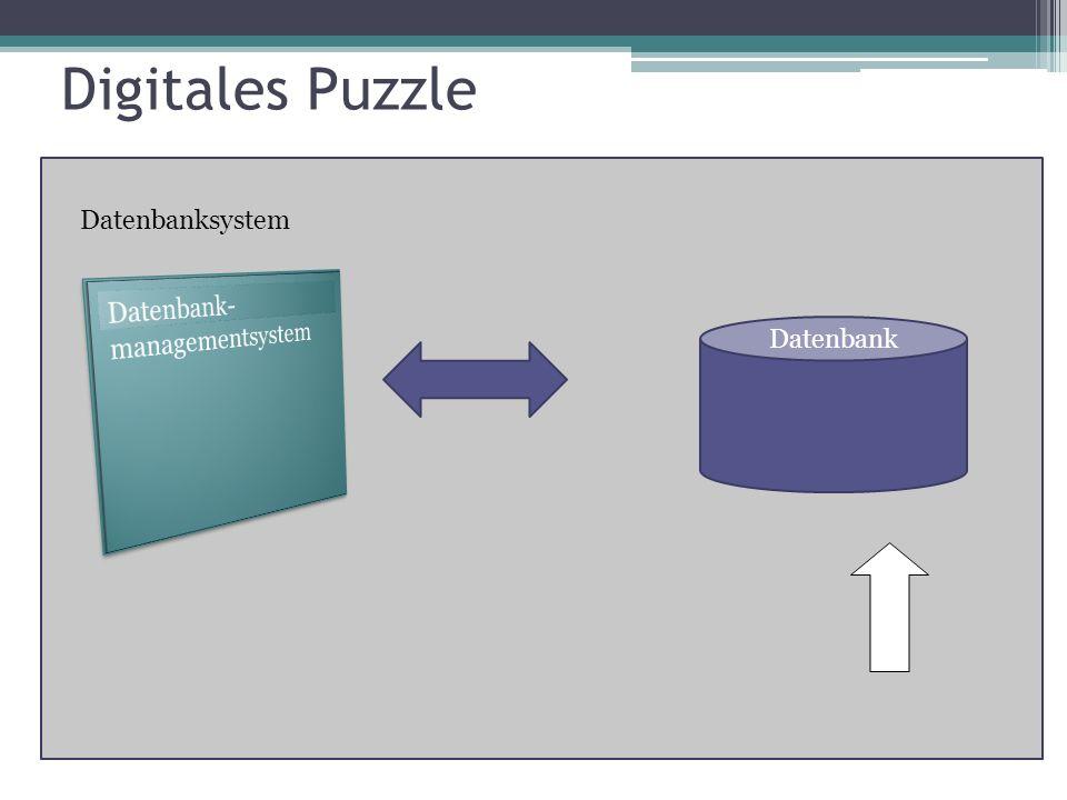 Datenbanksystem Datenbank Digitales Puzzle