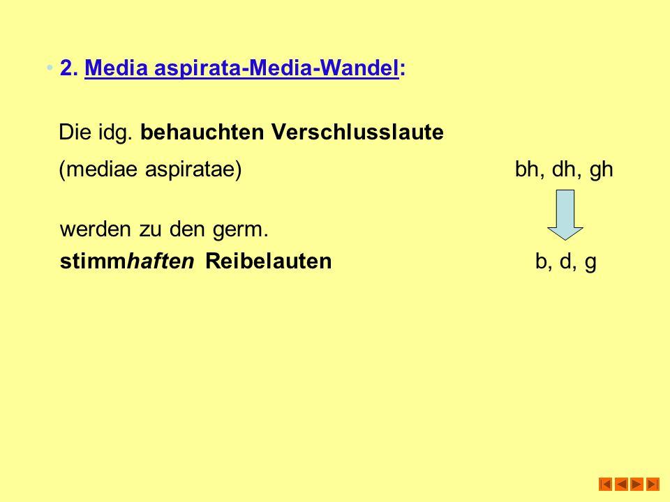 2. Media aspirata-Media-Wandel: Die idg. behauchten Verschlusslaute (mediae aspiratae) bh, dh, gh werden zu den germ. stimmhaften Reibelauten b, d, g
