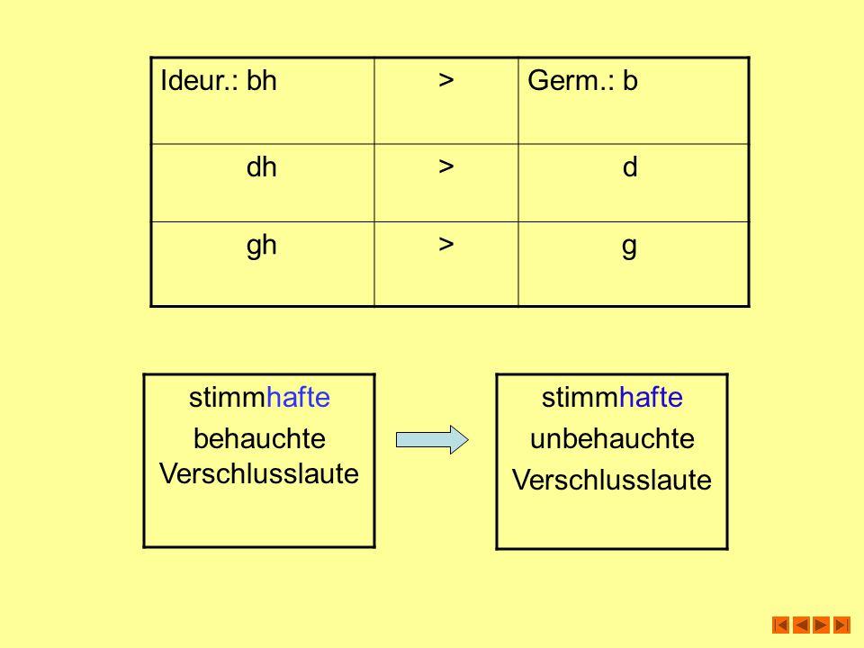 Ideur.:bh>Germ.: b dh> d gh> g stimmhafte behauchte Verschlusslaute stimmhafte unbehauchte Verschlusslaute