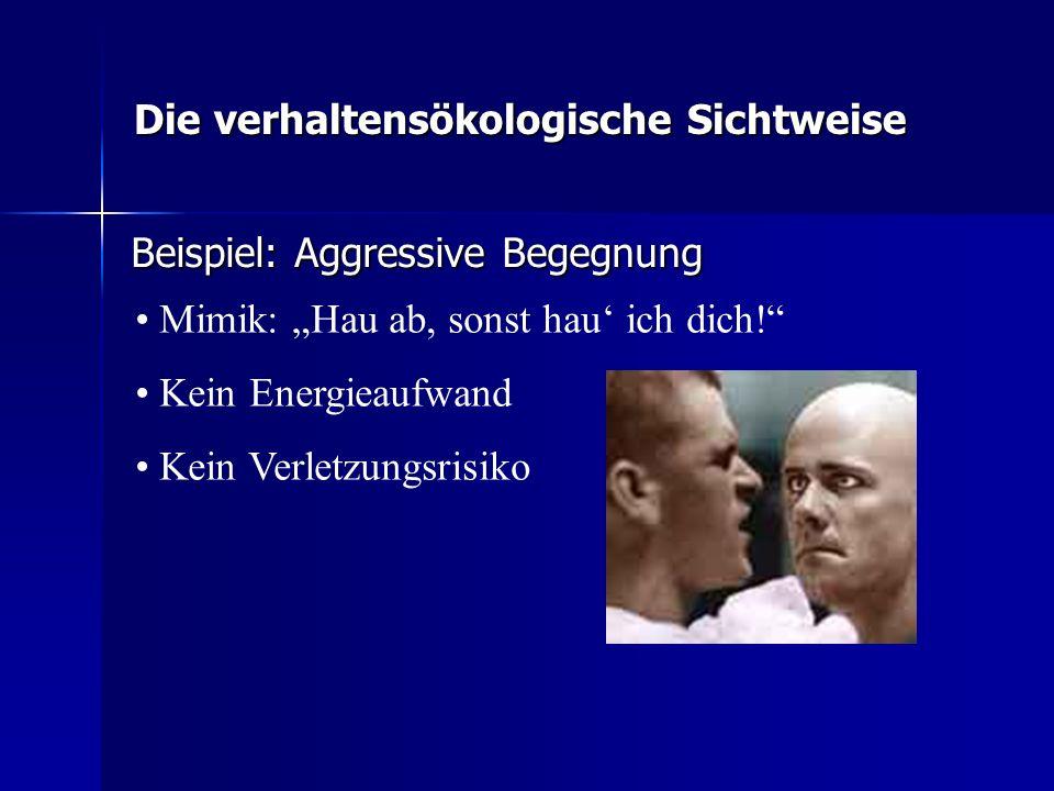 Die verhaltensökologische Sichtweise Beispiel: Aggressive Begegnung Mimik: Hau ab, sonst hau ich dich! Kein Energieaufwand Kein Verletzungsrisiko