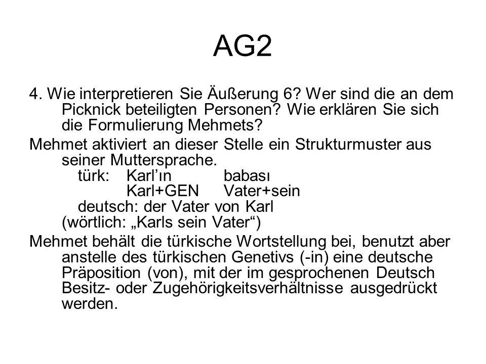 AG2 4. Wie interpretieren Sie Äußerung 6? Wer sind die an dem Picknick beteiligten Personen? Wie erklären Sie sich die Formulierung Mehmets? Mehmet ak