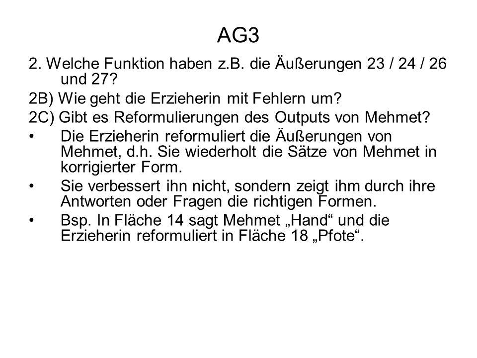 AG3 2. Welche Funktion haben z.B. die Äußerungen 23 / 24 / 26 und 27? 2B) Wie geht die Erzieherin mit Fehlern um? 2C) Gibt es Reformulierungen des Out