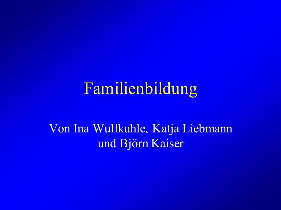 Familienbildung Von Ina Wulfkuhle, Katja Liebmann und Björn Kaiser