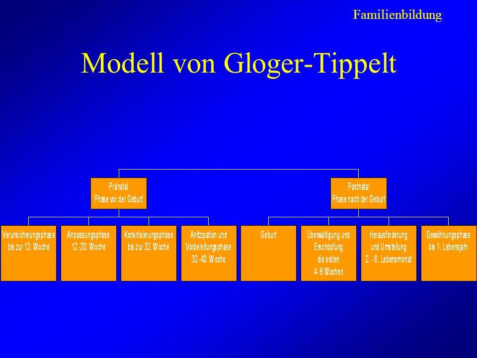 Modell von Gloger-Tippelt Familienbildung