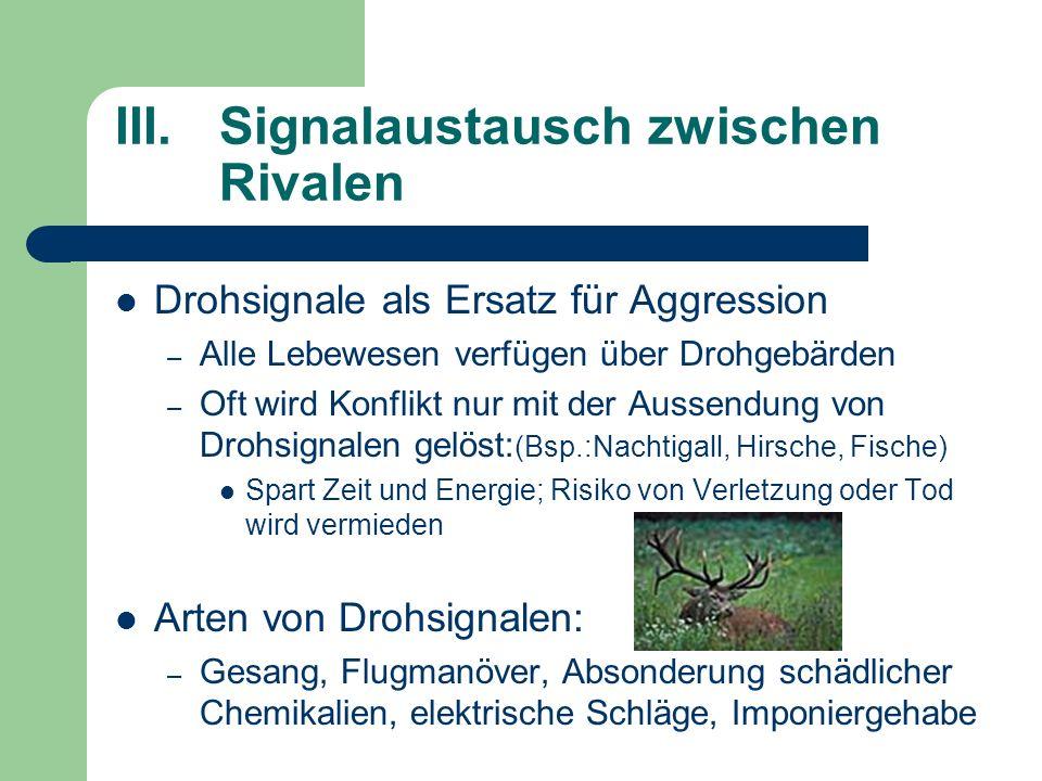 III.Signalaustausch zwischen Rivalen Drohsignale als Ersatz für Aggression – Alle Lebewesen verfügen über Drohgebärden – Oft wird Konflikt nur mit der