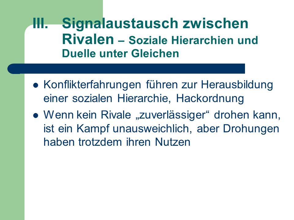 III.Signalaustausch zwischen Rivalen – Soziale Hierarchien und Duelle unter Gleichen Konflikterfahrungen führen zur Herausbildung einer sozialen Hiera
