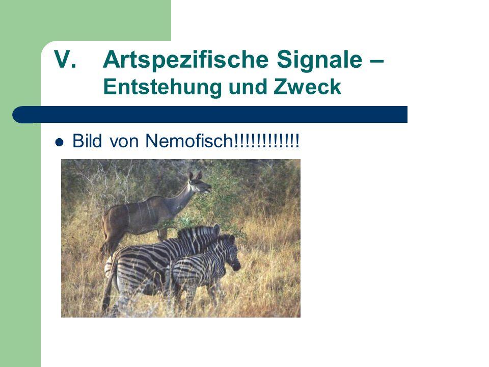 V.Artspezifische Signale – Entstehung und Zweck Bild von Nemofisch!!!!!!!!!!!!