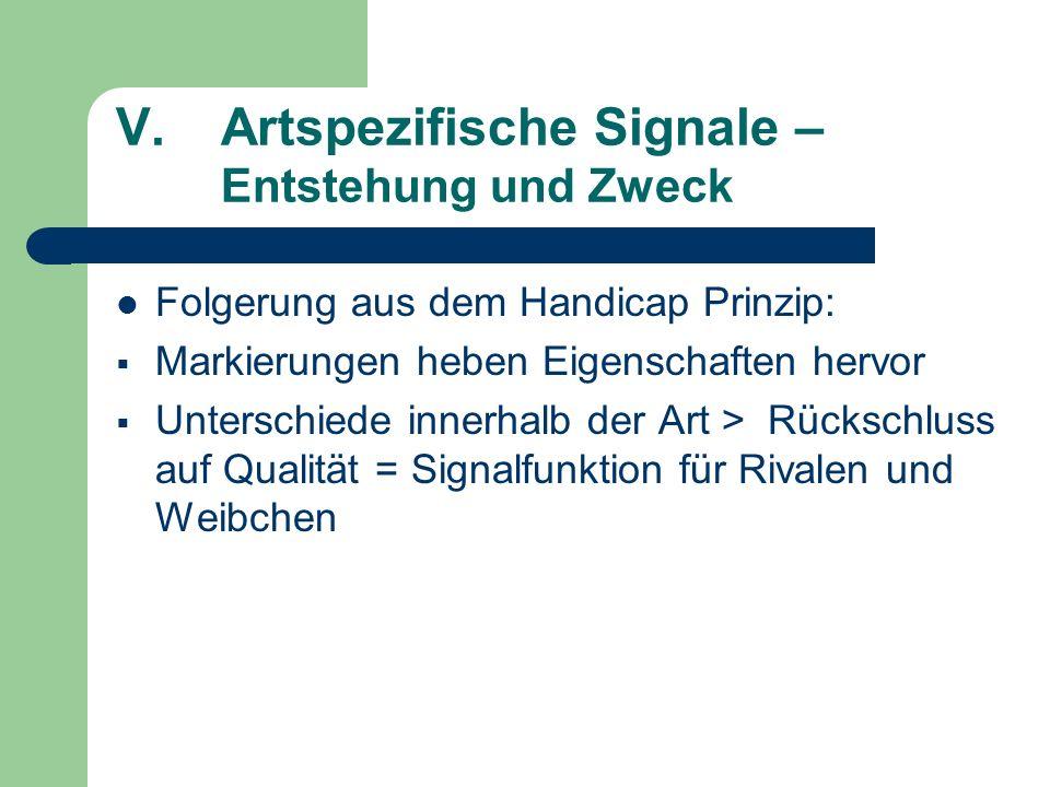 V.Artspezifische Signale – Entstehung und Zweck Folgerung aus dem Handicap Prinzip: Markierungen heben Eigenschaften hervor Unterschiede innerhalb der