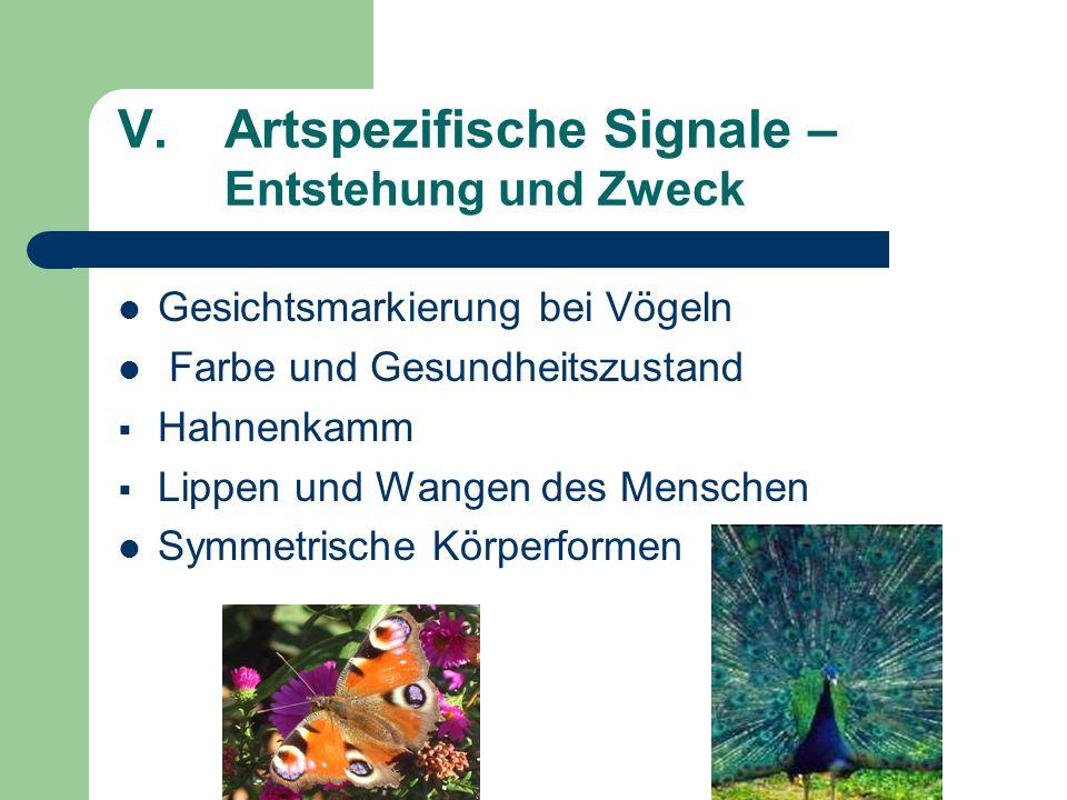 V.Artspezifische Signale – Entstehung und Zweck Gesichtsmarkierung bei Vögeln Farbe und Gesundheitszustand Hahnenkamm Lippen und Wangen des Menschen S