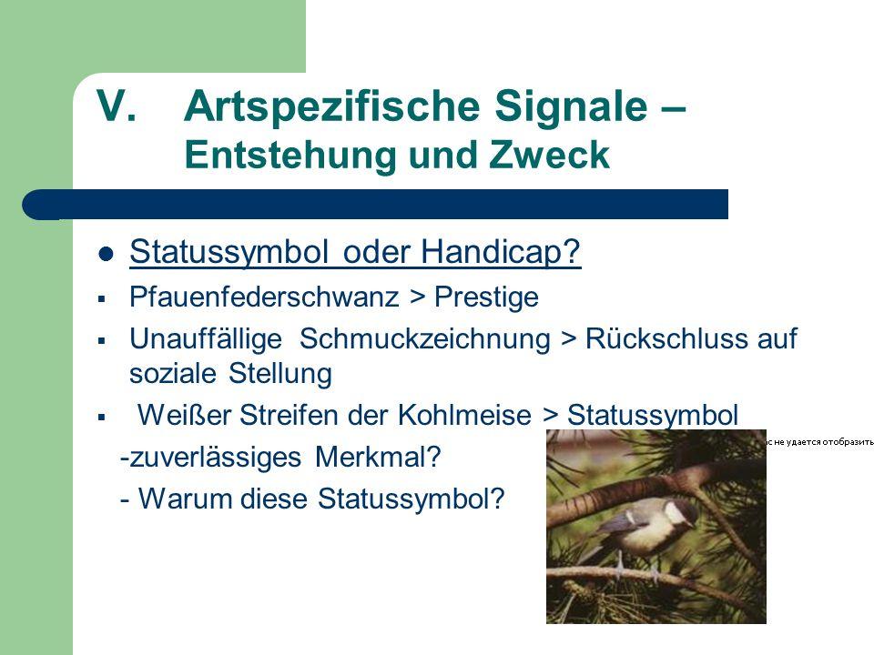 V.Artspezifische Signale – Entstehung und Zweck Statussymbol oder Handicap? Pfauenfederschwanz > Prestige Unauffällige Schmuckzeichnung > Rückschluss
