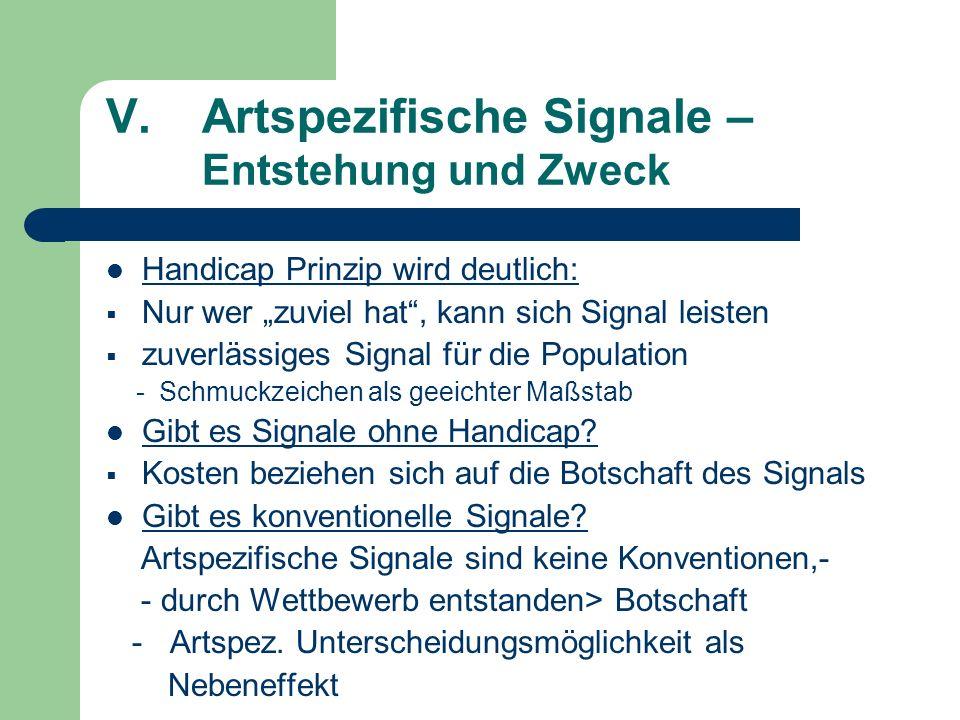 V.Artspezifische Signale – Entstehung und Zweck Handicap Prinzip wird deutlich: Nur wer zuviel hat, kann sich Signal leisten zuverlässiges Signal für