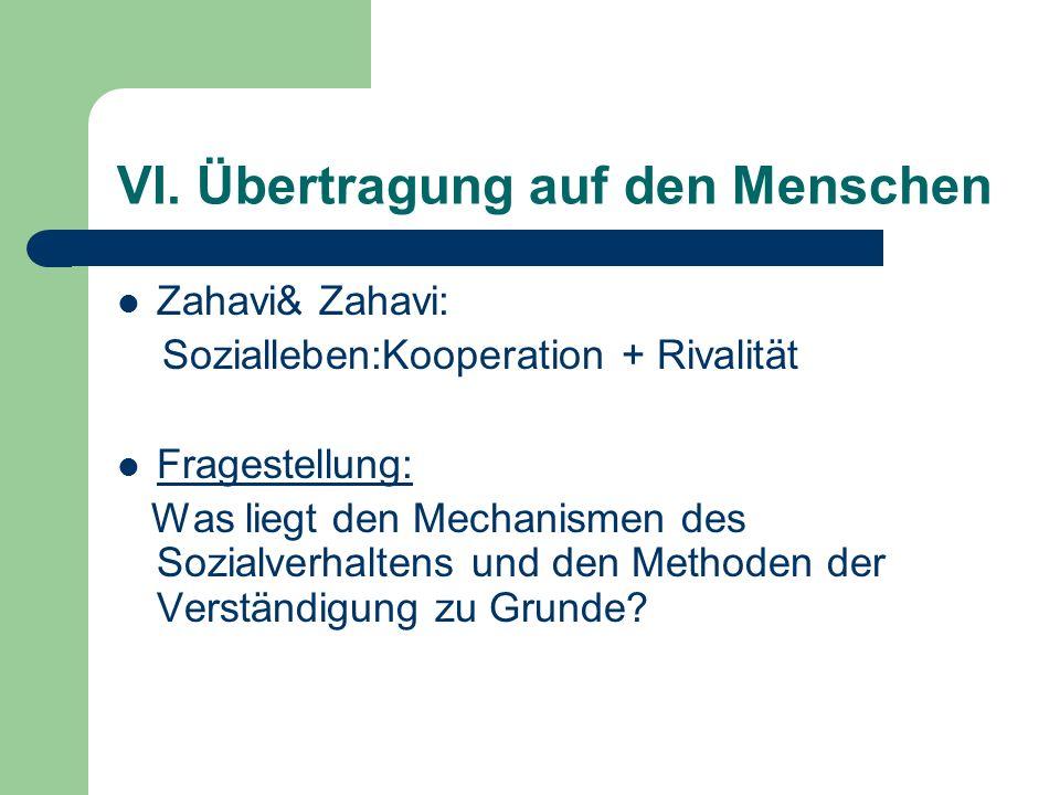 VI. Übertragung auf den Menschen Zahavi& Zahavi: Sozialleben:Kooperation + Rivalität Fragestellung: Was liegt den Mechanismen des Sozialverhaltens und