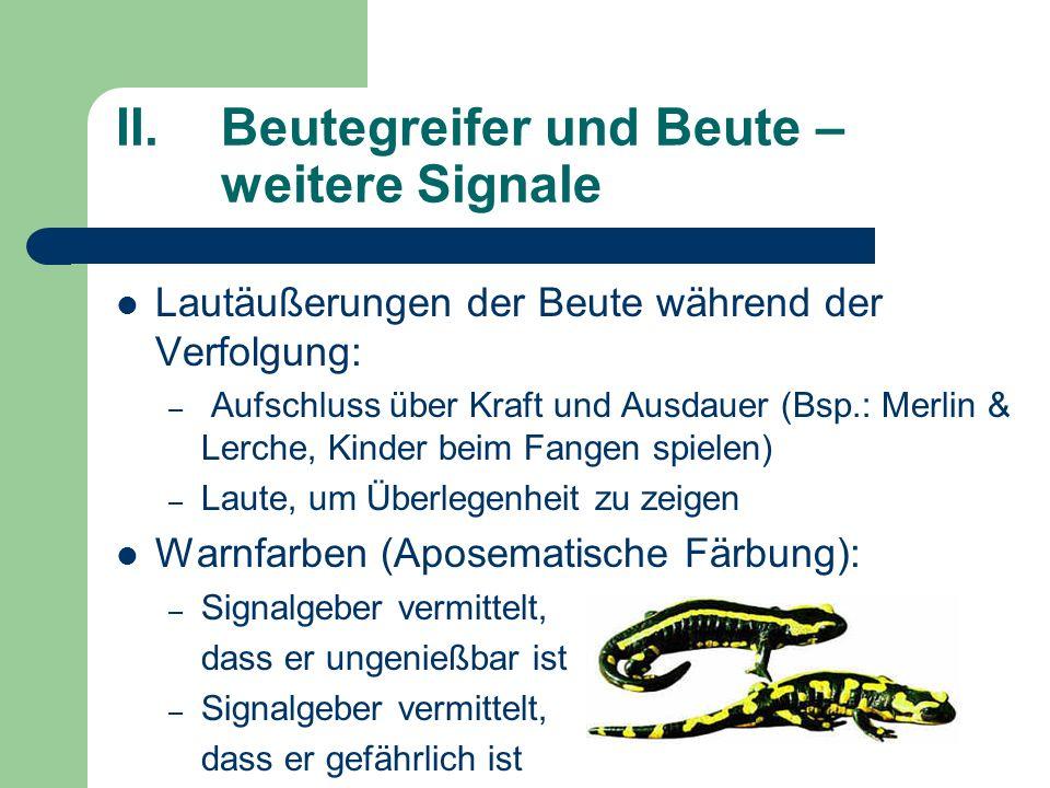 II.Beutegreifer und Beute – weitere Signale Lautäußerungen der Beute während der Verfolgung: – Aufschluss über Kraft und Ausdauer (Bsp.: Merlin & Lerc