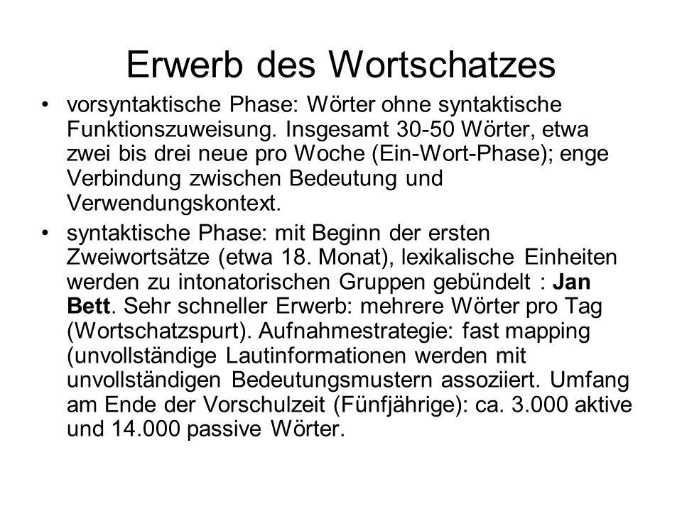 Erwerb des Wortschatzes vorsyntaktische Phase: Wörter ohne syntaktische Funktionszuweisung. Insgesamt 30-50 Wörter, etwa zwei bis drei neue pro Woche