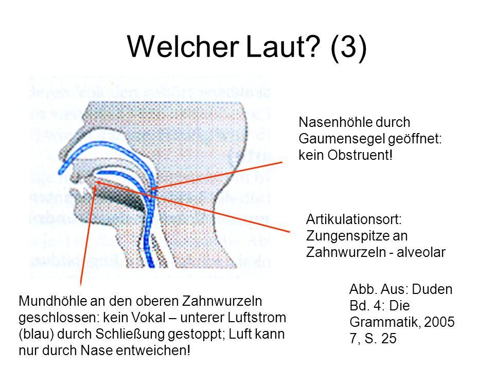 Welcher Laut.(2) Nasenhöhle durch Gaumensegel geschlossen: kein Sonorant.
